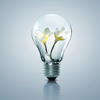 illuminazione a led vicenza